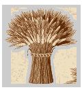 Wheat Sheaf Family Crest